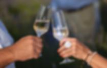 brindis champan pareja atardecer natural
