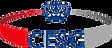 CESG-Logo.png
