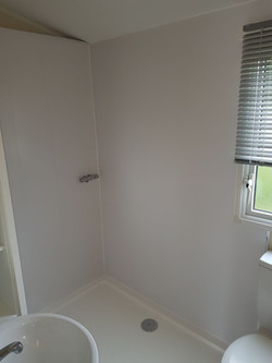 Shower cubicle and cladding