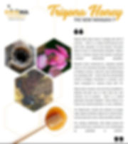 Trigona Stingless Bee Honey