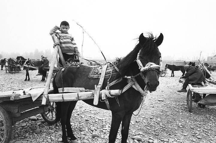 Boy-horse cart (corrected).jpg
