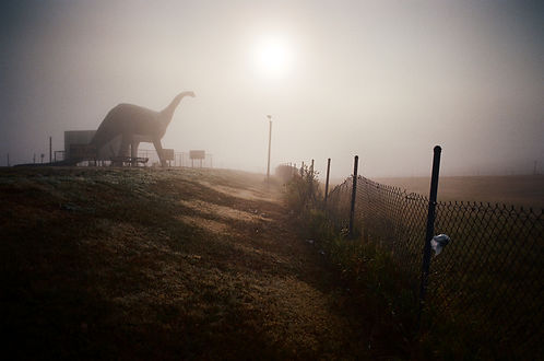 31 Dinosaur.jpg