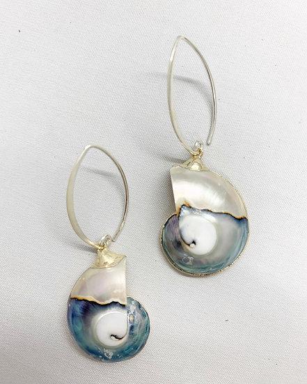 Beautiful Blue Shell Earrings