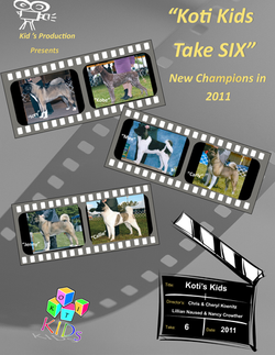 Kids+take+SIX++1of4+png.png