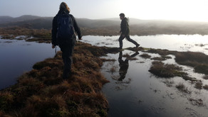 Let's talk Dirty…  Peat restoration as Carbon Strategy
