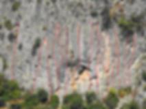 escaladapego2.png