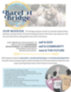 Bridge Fact Sheet.png