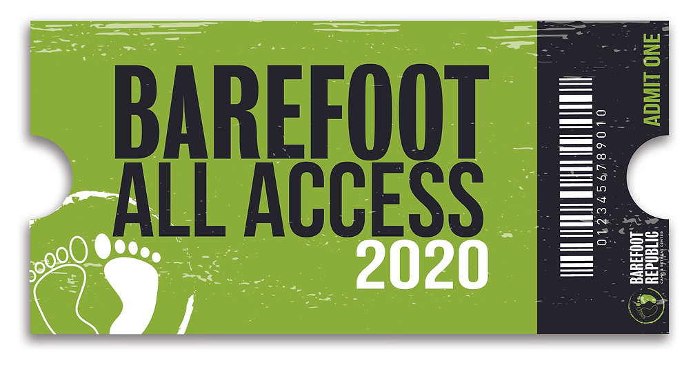 Barefoot All Access logo.jpg