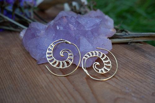 Ammonite Spiral earrings
