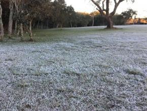 Terça-feira será de amanhecer frio no RS