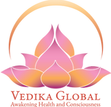 Vedika Global Logo.png