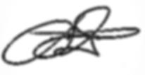 Assinatura Flávio (1).png
