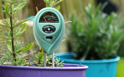 Soil meter in a pot