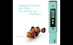 ph meter and fish