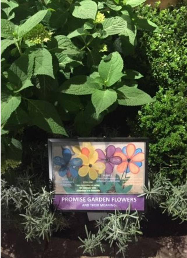 "A small rectangular sign reads ""Promise Garden Flowers"". The sign is situated among various greenery."