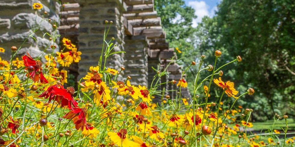 Café for Care Partners Garden Tour and Horticultural Happy Hour