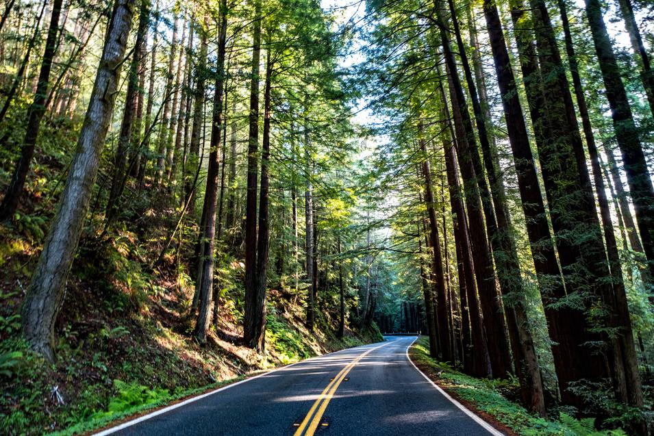 Highway One, California