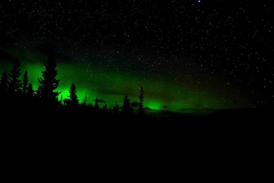Northen Lights, Alberta