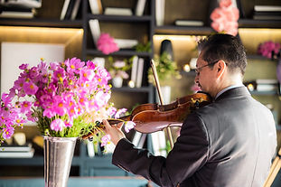 violinista.JPG