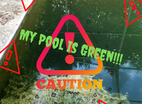 Green Pool? Don't let your clean up turn into your worst nightmare!