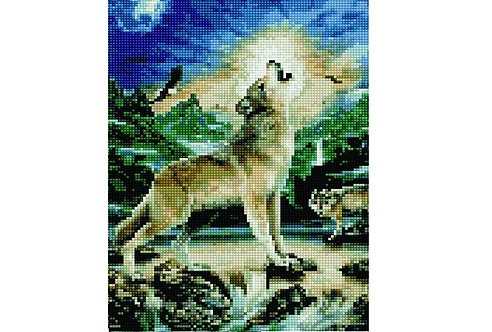 Алмазная мозаика 30х40 QS201006 Одинокий волк