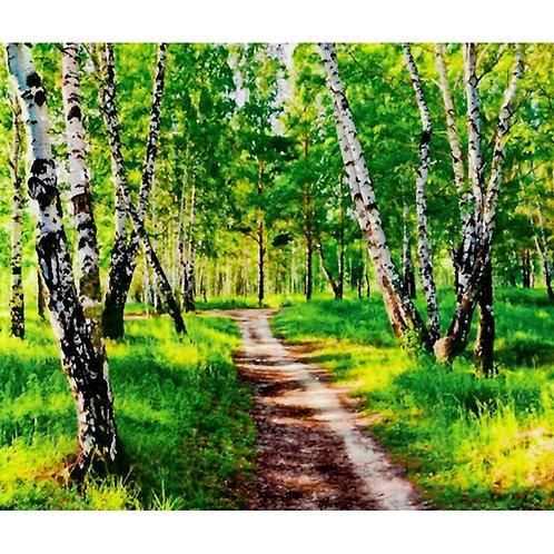 Алмазная живопись 40*50 см ПОЛНОЕ заполнение Тропинка в лесу Модель: 301275