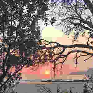 Een roze zonsopgang bij Narrawallee in Australië