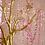 Thumbnail: Manzanita Trees