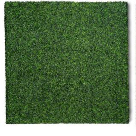 8'x8' Boxwood Grass Wall