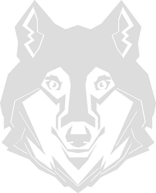 Wolf%20head%20-%20grey_edited.png