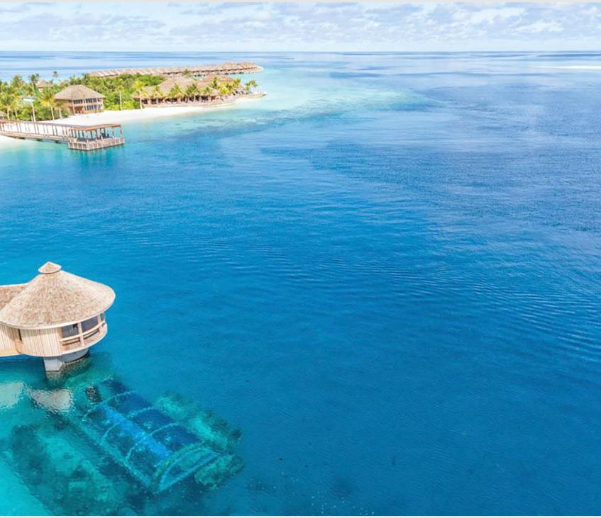 maldives underwater vow renewal water