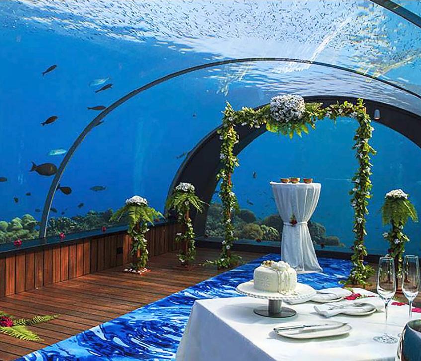 maldives underwater vow renewal 1