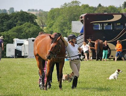 sammi birch equestrian