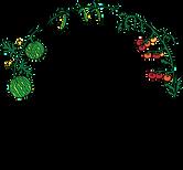 Organically Grown Logo.png