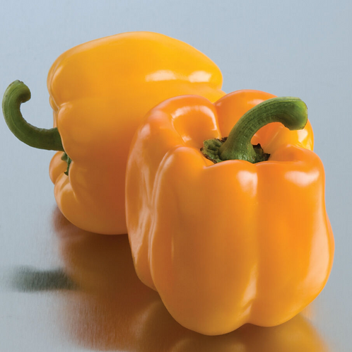 Organic Yellow Bell Pepper