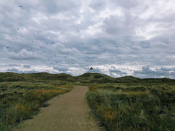 north_sea_cycle_route_denmark
