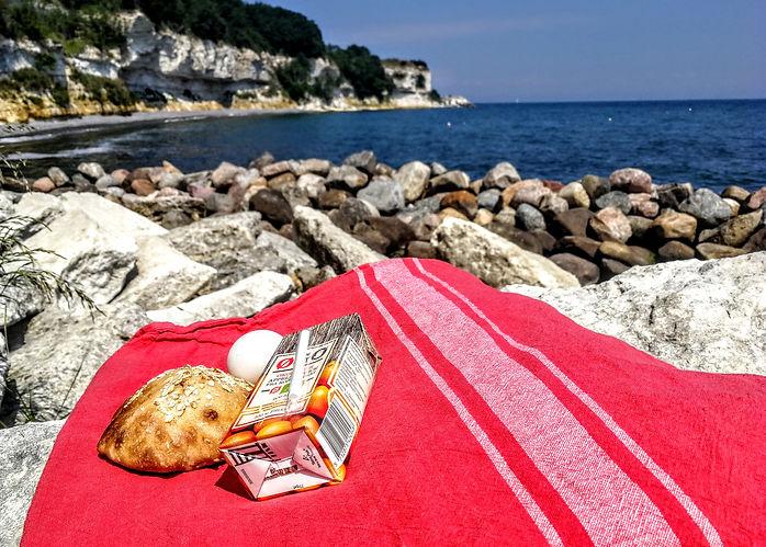 picnic_stevns_klint