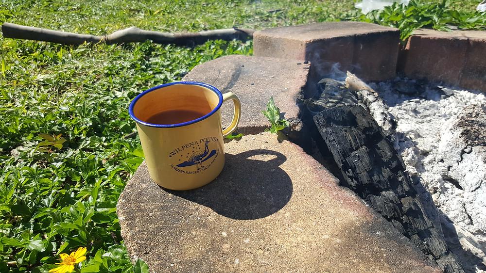 zero waste camping ideas