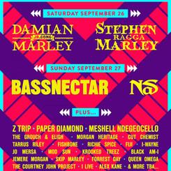 Bay Area Vibez Roots+Electronic Festival