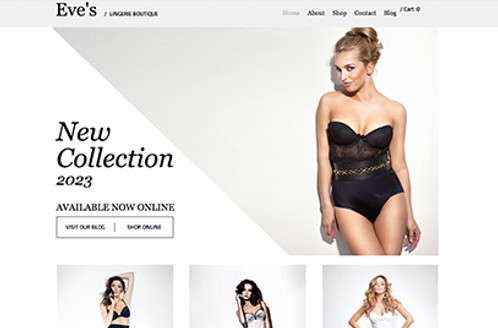 White Shade Graphics - Best E-commerce Website Designing in Lucknow