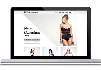 Lingerie Web Design