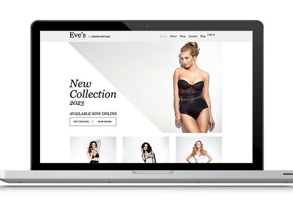 Web Design Down Payment-Ecommerce Web