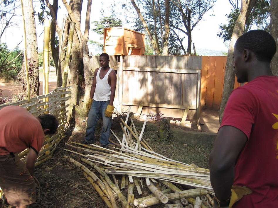 Edirisa (Uganda)