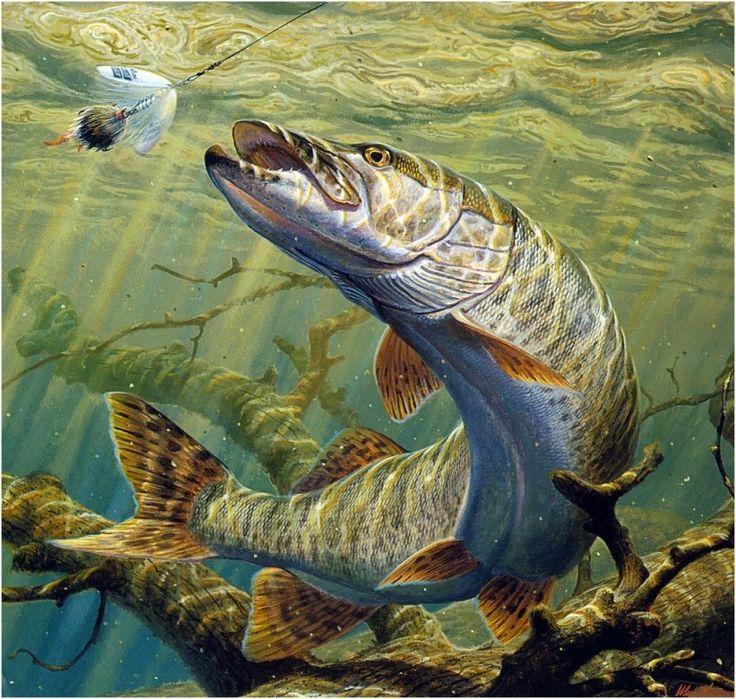 6f9ef57789c43cc2e883de68647c7427--gone-fishing-art-google
