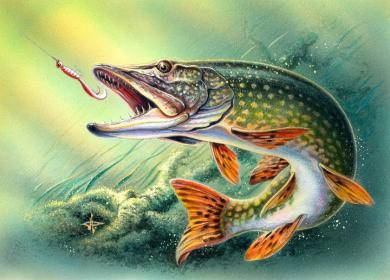 fish-art-euro-pike