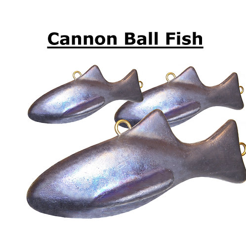 CANNON BALL FISH