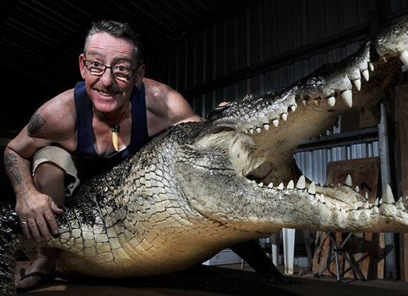 Large Full Mount Crocodiles