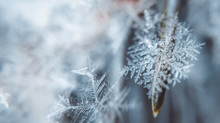Dharma Acupuncture announces winter solstice treatment special