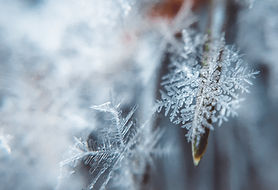 Snowflake Cryotherapy