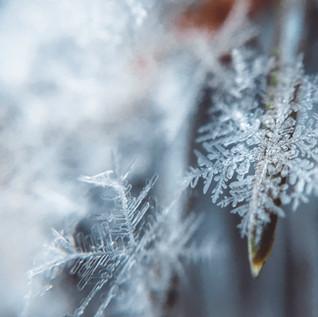 Prepare For Winter!